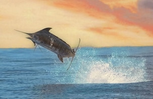 FULL-DAY & HALF-DAY PRIVATE MARLIN SPORTFISHING TRIPS