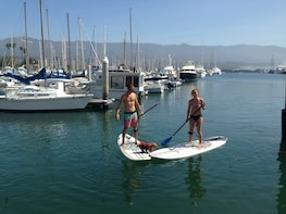 SUP (Stand-Up Paddle Board) Hire