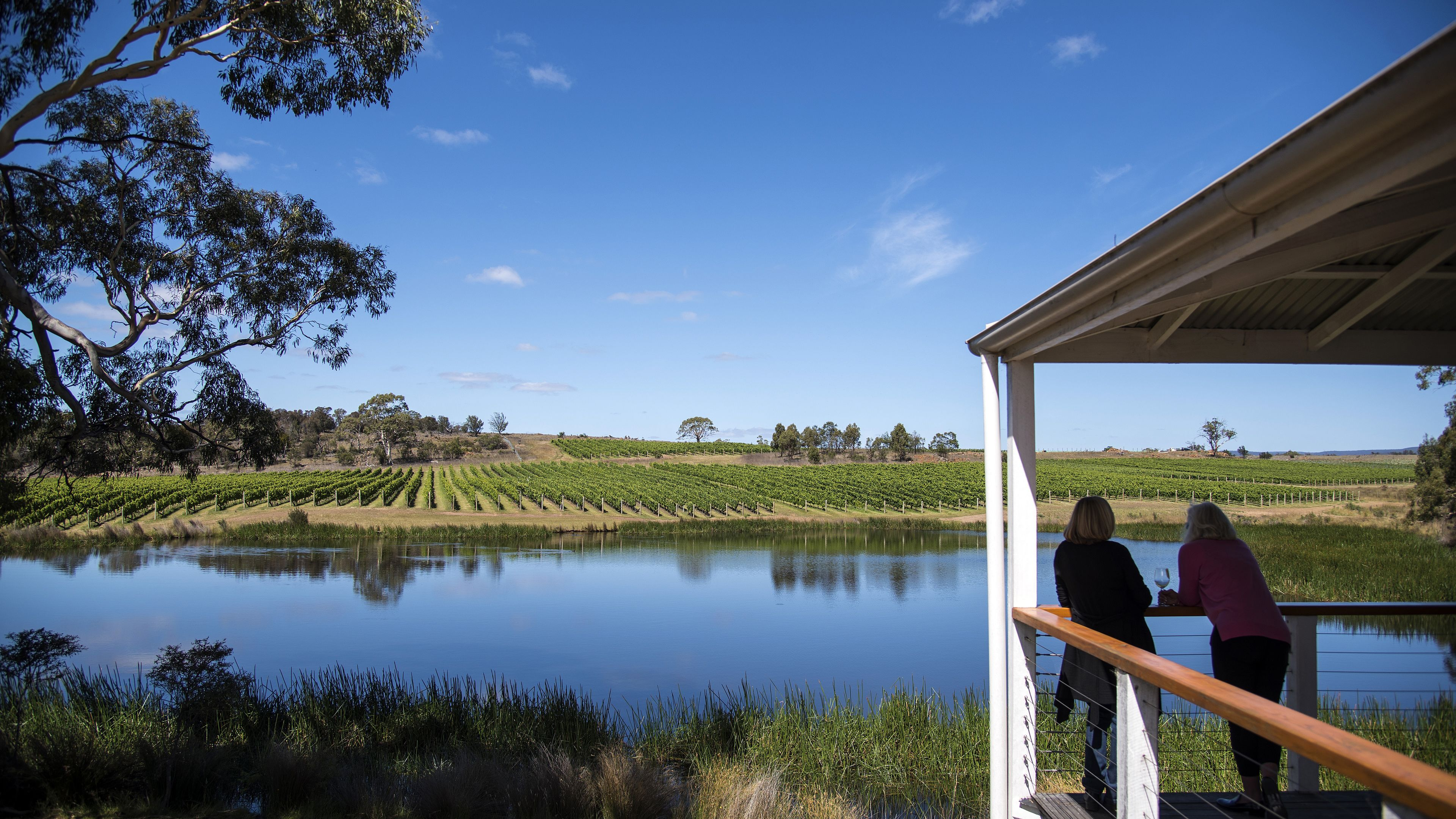 East Coast Tas Day Tour: Seafood, Wine, Beaches & Berries