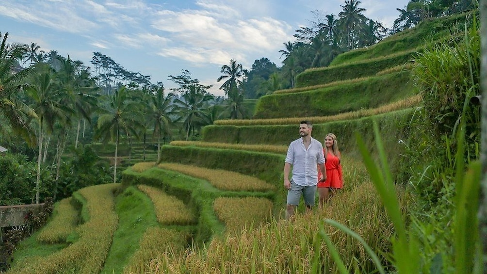 Show item 1 of 9. Private Tour: Bali Top Sites