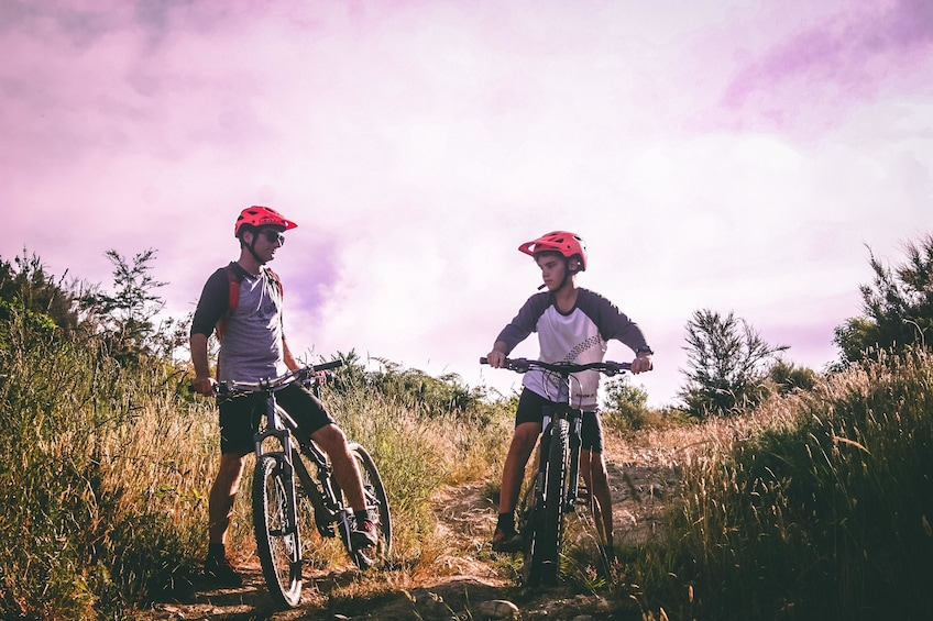 Show item 1 of 10. Winelands Cycling Adventure