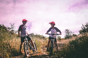Winelands Cycling Adventure