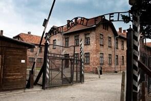 Auschwitz-Birkenau & Wieliczka Salt Mine Guided One-Day Tour