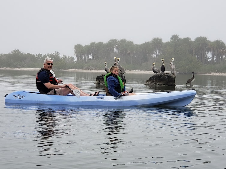 Show item 4 of 8. Manatee and Dolphin kayak tour \ Haulover canal (Titusville)