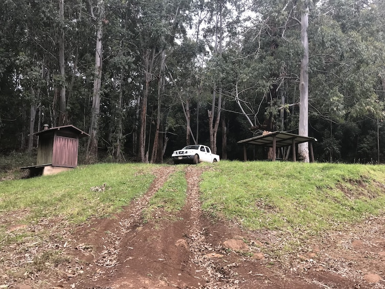 Mountain backroad 4x4 adventure- let's get muddy