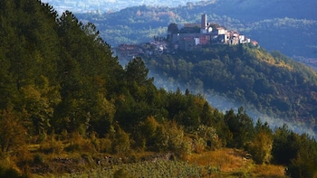 Truffle Hunt and Wine Tasting in Istria - Small Group Tour