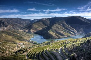 Douro Valley 3 different wineries and lunch included