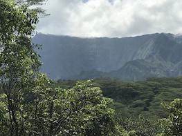 Wailua half day blue hole views (Kuilau ridge)