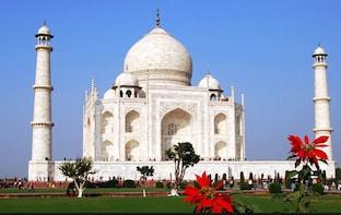 Local Full Day Agra - Taj Mahal , Agra fort Mehtab Garden.