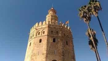 Seville: Private Walking Tour with Eco River Cruise
