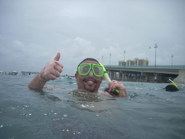 17 Years Best Snorkeling Tours #1 Activity TripAdvisor n Fla