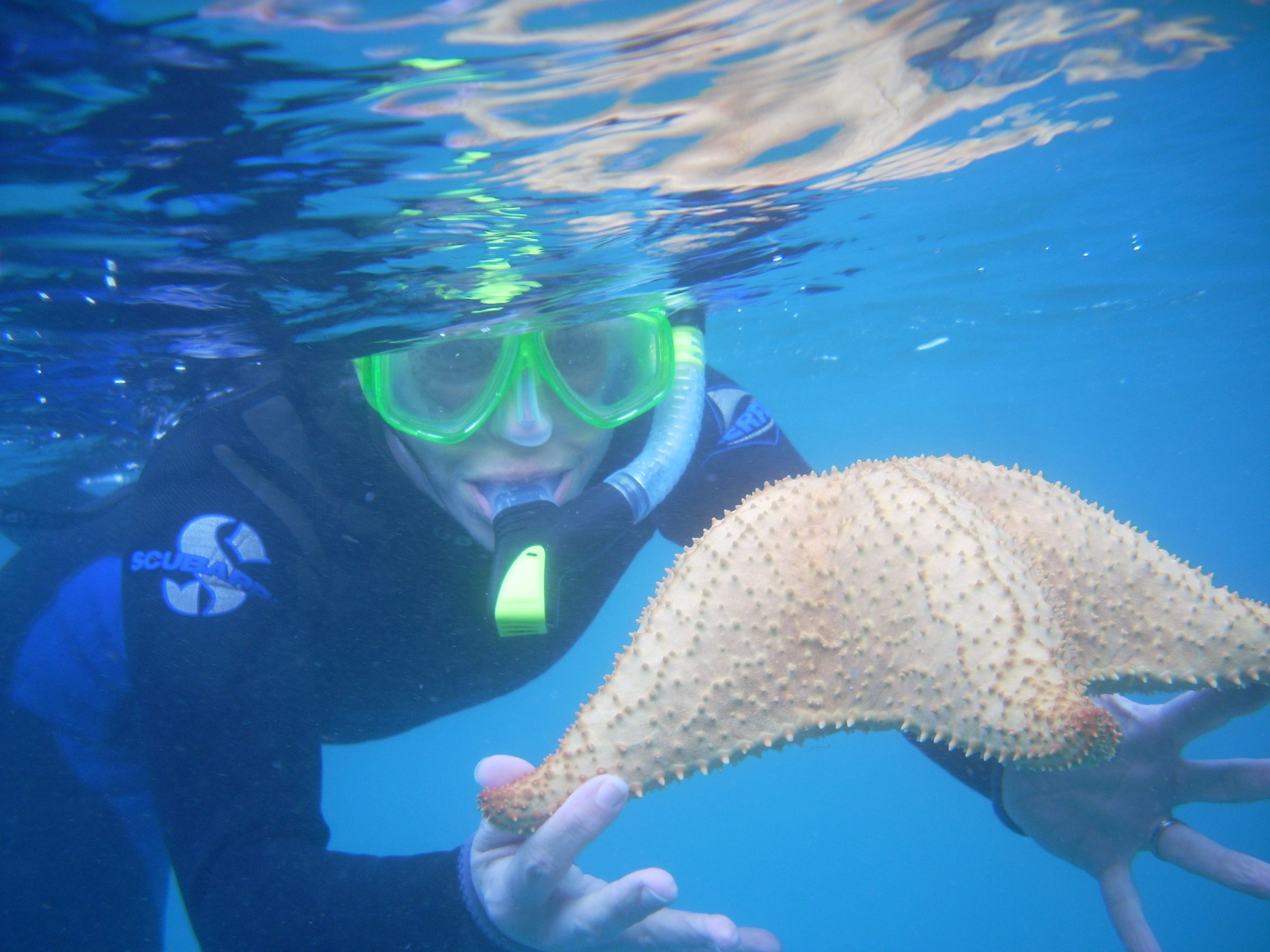Master Snorkeling in One Tour with Safe Methods