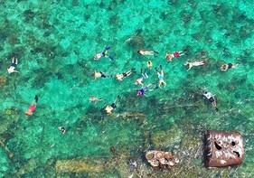 North Side Sea Stars & Blue Channel Snorkel Adventure