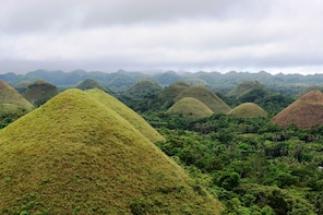 FULL-DAY BOHOL EXCURSION (DEPARTS FROM CEBU)