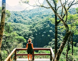 Tijuca Forest Family Hike (half-day)