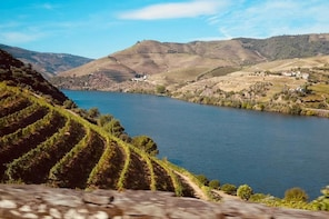 Full Day Tour to the Douro Wine Region with Certified Guide