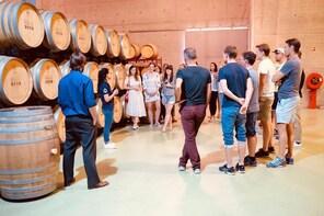 Winefeels Douro Premium