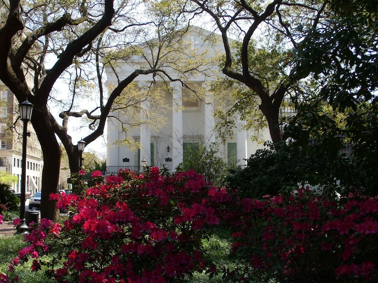 Show item 1 of 5. Stroll with a local through Savannah's Historic District