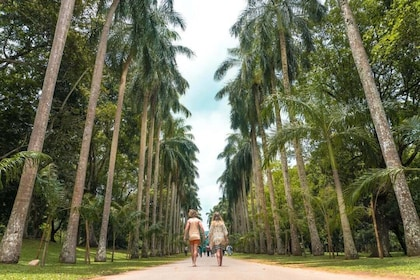 Kandy-sri-Lanka-Royal-Botanical-Gardens-1080x720.jpg