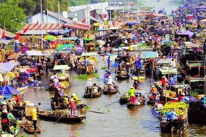 Mekong Delta 1 Day Tour (Cai Be Vinh Long)