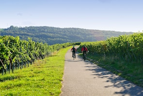 From Barcelona: E-Bike Tour in the vineyards with 2 Wineries