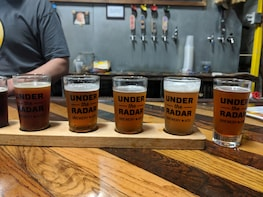Montrose and Museum District Biking Brewery Tour