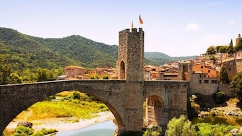 Private Besalú Vic and Medieval Towns Tour From Barcelona