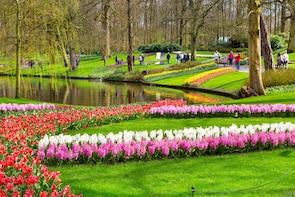 Tulip Farm Annemieke (pull your own tulips) & Keukenhof
