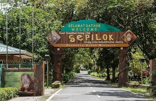 DAY TOUR TO SEPILOK ORANG UTAN REHABILITATION CENTRE