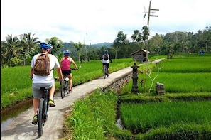 Amazing Volcano Cycling-Rice Fields-Agrotourism