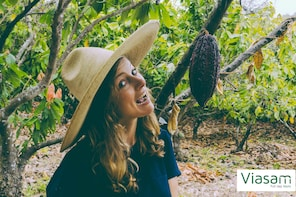 Half Day:Route of Fruits &Plantations Tour from Guayaquil