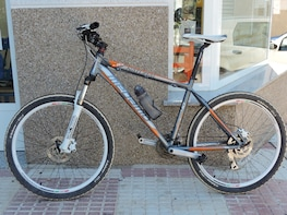MOUNTAIN BICYCLE RENTAL