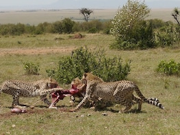 3 Days Tsavo East and West