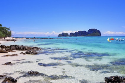 Phi Phi & Bamboo Islands Tour by Speedboat