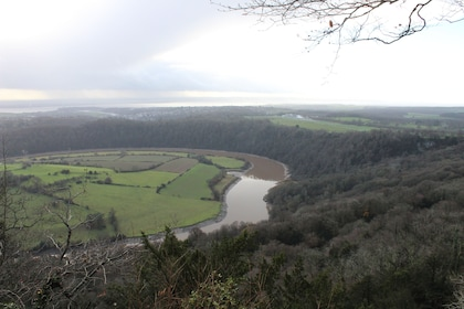 Walk the river Wye Valley to Tintern Abbey