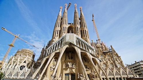 Barcelona Highlights Small Group Half Day Tour with pick-up