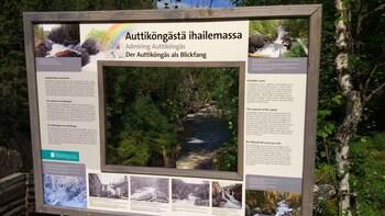 Small group Auttiköngäs Waterfalls Trail Hike