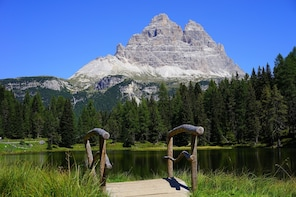 Cortina & the Dolomites in 1 day from Venice, Private Tour