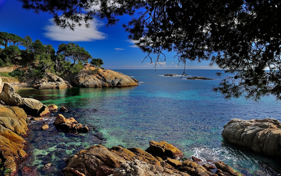 Show item 5 of 5. Private Costa Brava & Empuries Tour with Panoramic Boatride