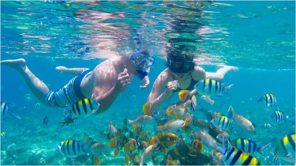 Show item 5 of 9. Couple snorkel with fish near Nusa Lembongan in Bali