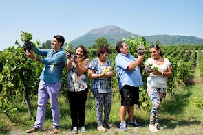 Pompeii & Vesuvius Wine Private Tour from Amalfi Coast