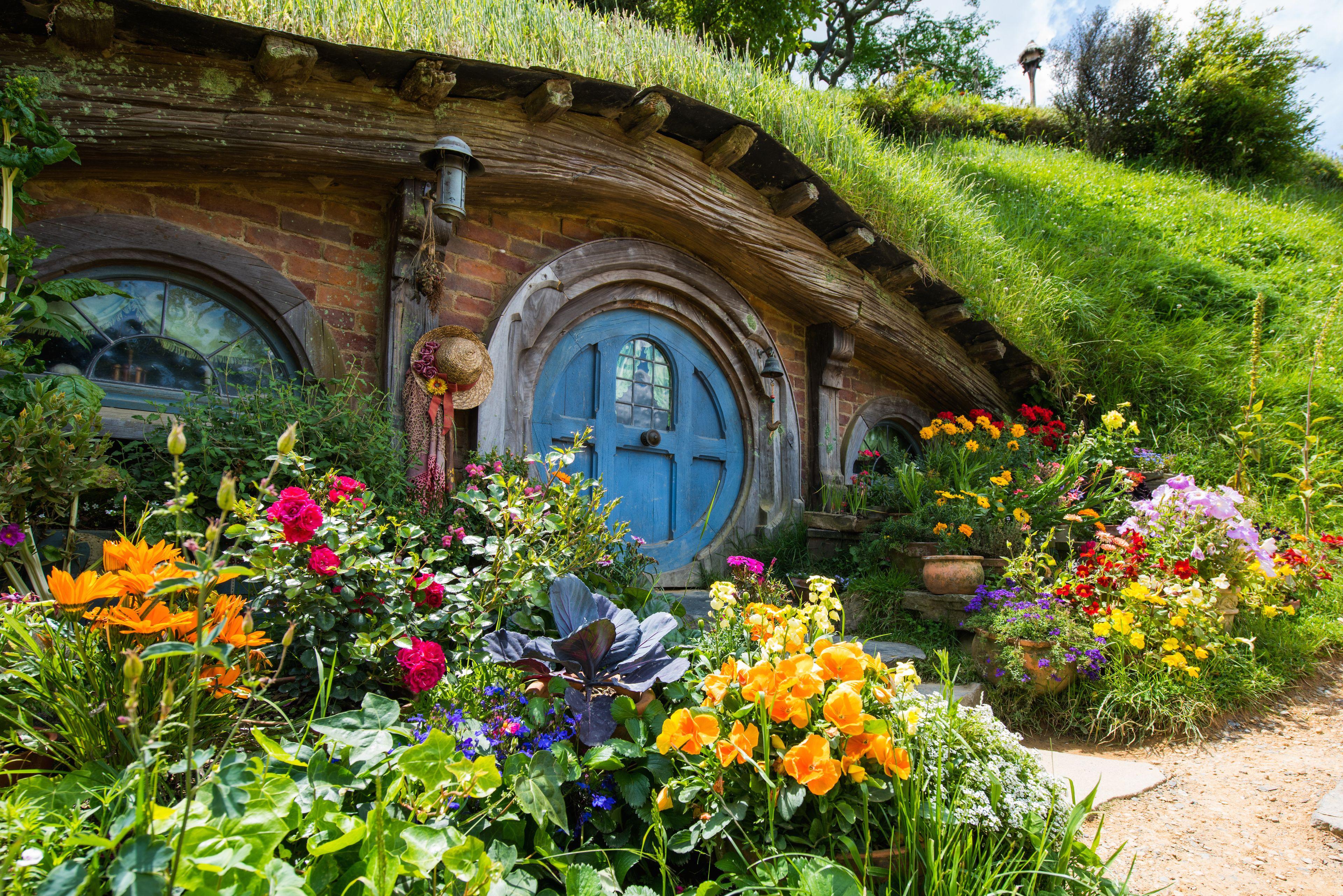 Auckland to Rotorua via Hobbiton Private Tour