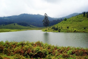 Kodaikanal City Tour (Pick-up from Hotel)
