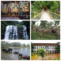 Coorg Day Excursion from Mysuru (Pick-up from Hotel)