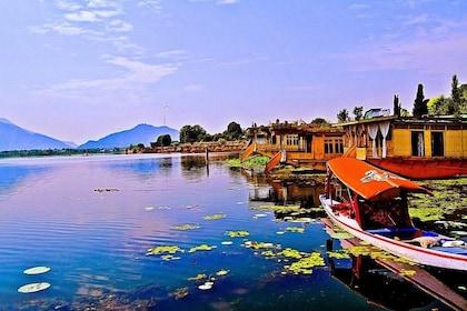 Gulmarg Day Tour (Pick up from Srinagar Hotel)