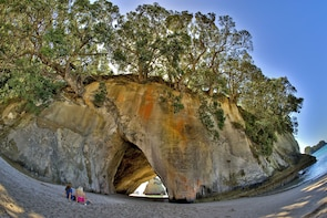 Auckland to Coromandel Peninsula 3 Day Private Tour