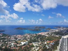 St. Thomas Island Sightseeing Tour With Shopping