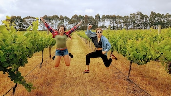 3 Day Margaret River & Albany Tour from Perth