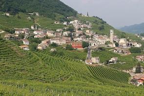 Prosecco region cellar visit, wine tasting, Palladian Villa