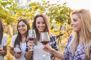 Verona: Amarone Wine Tasting Tour in Valpolicella